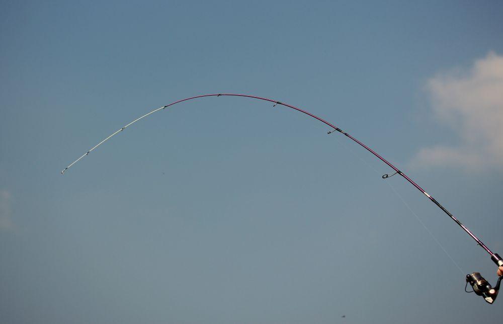 Wędzisko Spinningowe Ebisu Violet II / 1,83m/ 0,5-3g / EV  602-SUL