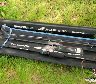 blue_bird_compact