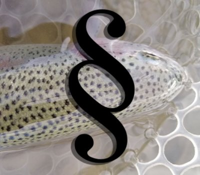 trout-area-league-poland-polaska-liga-trout-area-4