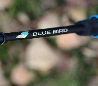favorite_nowy_blue_bird_main