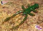 crazy-fish-crayfish-7,5-main