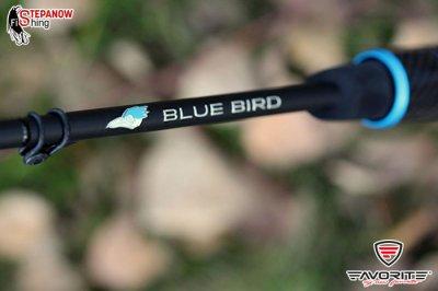 blue-bird-new-wedzisko-spinningowe-4